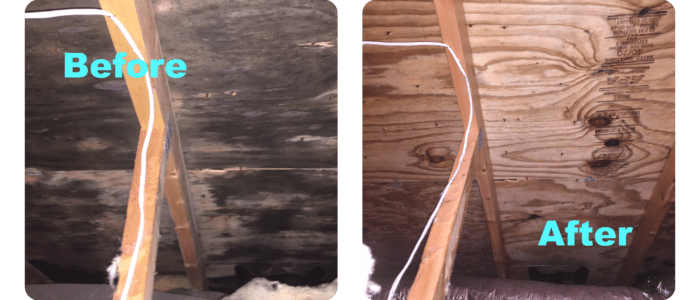 Attic-Mold-Removal-cost-in-toronto
