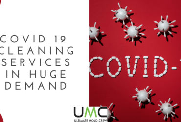 covid-19-cleaning-demand-in-canada