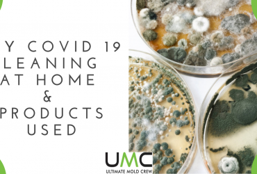DIY COVID 19 Cleaning & Disinfecting At Home & Products Used